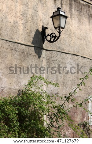 Old medieval street lamp on a wall covered by vegetation