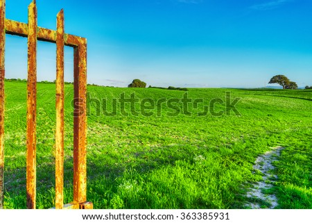 old metal gate in a green meadow - stock photo