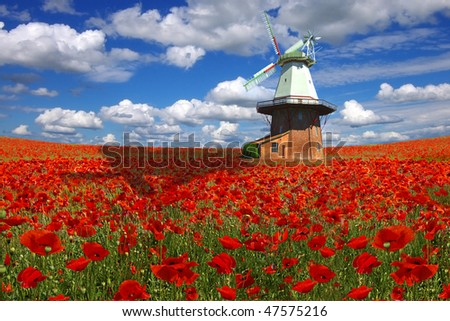 Old mill on a background of the poppies plantation. - stock photo