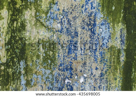 Old mossy green wall as background texture