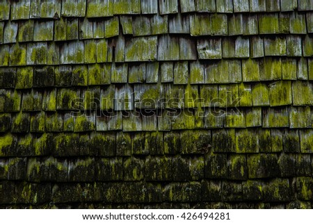 Old mossy shingles on a farmhouse in Mondsee, Austria - stock photo