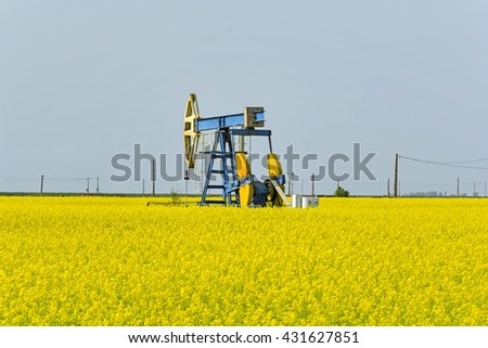 Old oil pump jack in canola rapeseed field. - stock photo