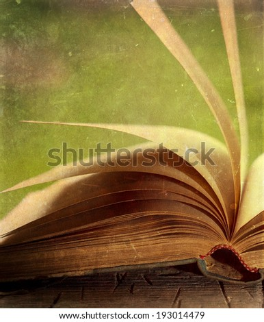 Old open book on vintage background - stock photo