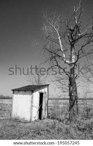 Old outhouse beside bare tree - stock photo
