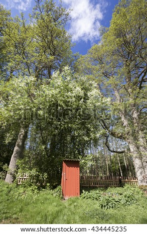 Old outhouse under blooming bird cherry tree in garden corner. Photographed at Hiiumaa, countryside Estonia, Europe. - stock photo