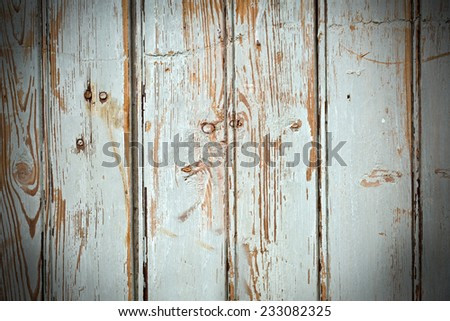 old painted wooden planks with nails and gauge marks  - stock photo