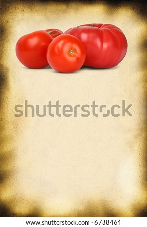old paper background and fresh tomatos, large copy space for your content, photo inside is my property - stock photo
