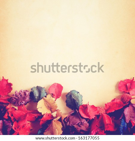 old paper background with dry flower, retro filter effect - stock photo