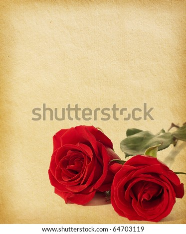 Old paper textures with  two red roses.