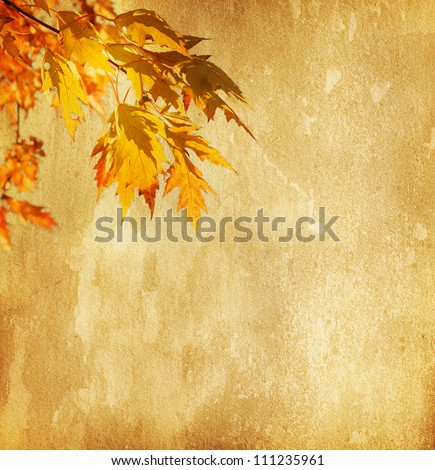 old paper with autumn leaves - stock photo