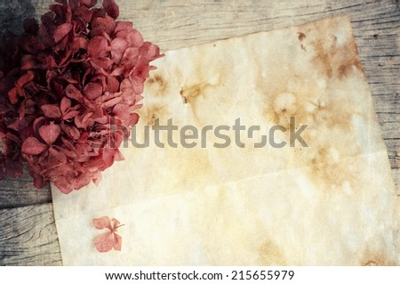 Old  paper with dried flowers