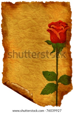 Old paper with rose - crumple parchment paper texture background - stock photo