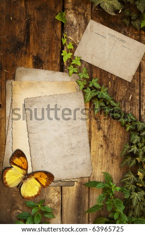 Old papers and postcard on a natural background - stock photo