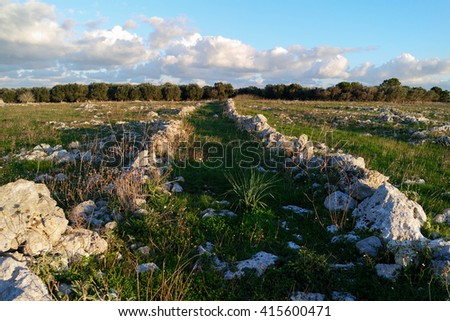 Old Path in the Middle of a Meadow - stock photo