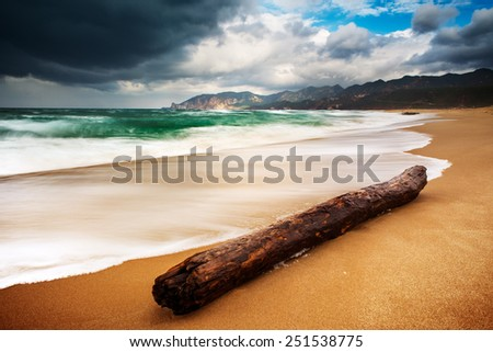 Old piece of wood in the midle of a desert beach with stormy weather - stock photo