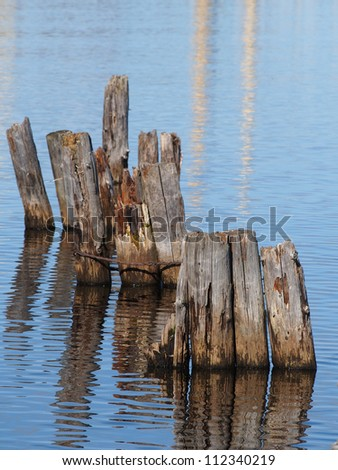 old piles in the lake