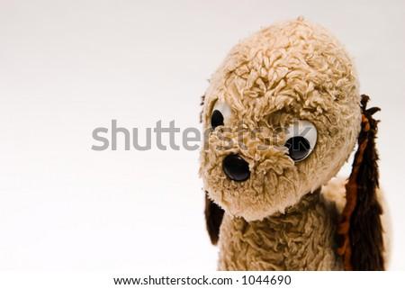 old plush dog toy on white background - stock photo
