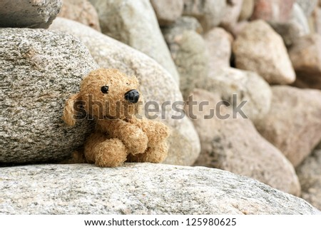 Old plush toy dog abandoned on a stone, a horizontal picture - stock photo