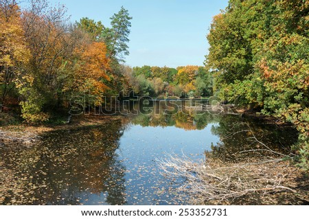 Old pond in a forest, autumn, October, sunny weather, the beach, yellow leaves