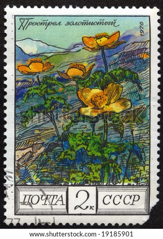 Old post stamp from USSR with flower