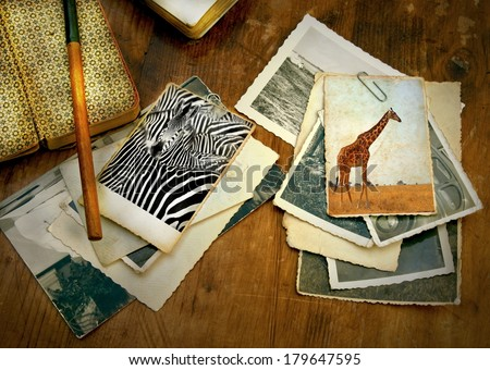 old processed image from a wooden desk filled with vintage objects and old photo's from a safari in Africa showing a zebra and giraffe   - stock photo