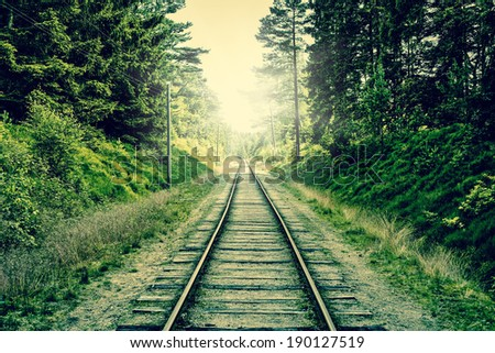 Old railroad going through the forest - stock photo