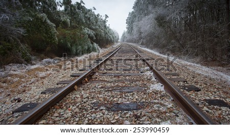 Old railroad tracks passing through a forest after an ice storm - stock photo