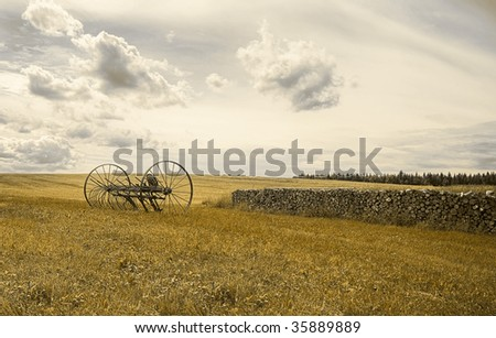 Old rake and a cord of wood in a field under a cloudy sky. - stock photo