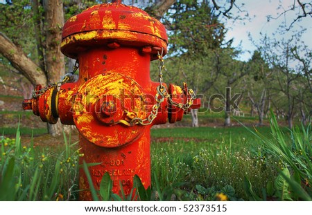 Old Red and Yellow Fire Hydrant in Orchard - stock photo