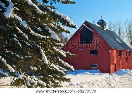 Old red barn and fir tree in a winter scene