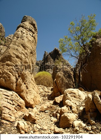 Old reef formation in Geikie gorge, Western Australia