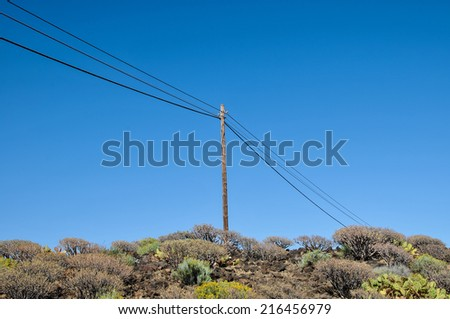 Old retro telephone poles in the field