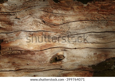 Old rich brown wood grain texture background with knots - stock photo