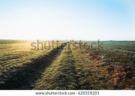 Old road in a field at sunrise.