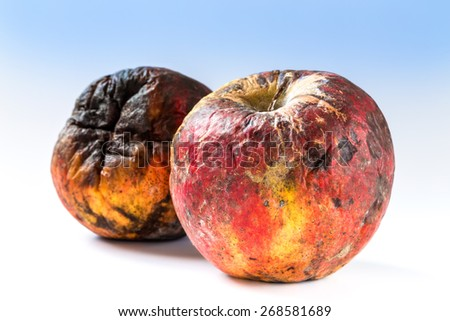 Old rotten apple covered with mold, bad storage. - stock photo