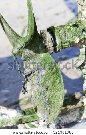 Old screw propeller of a fishing boat covered with algae in france - stock photo