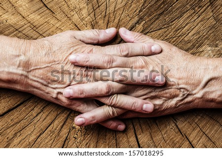 old senior hands and old tree