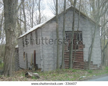 old shack in the woods