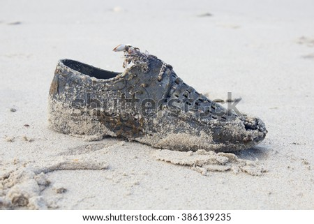 old shoe with shell on beach