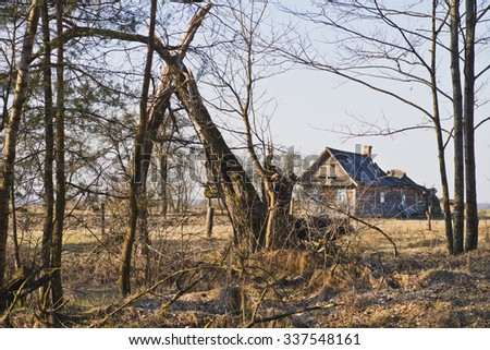 Old single abandoned house in the woods
