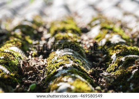 Old slate roof with moss on it, selective focus