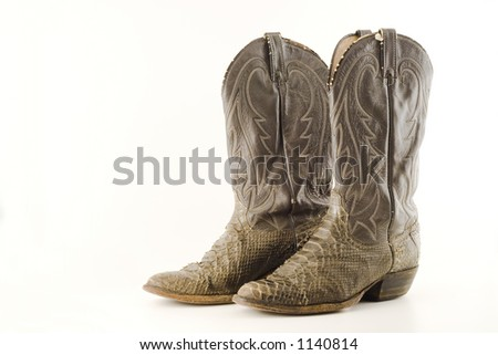 Old snake skin cowboy boots - stock photo