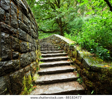 old stairs in forest - stock photo