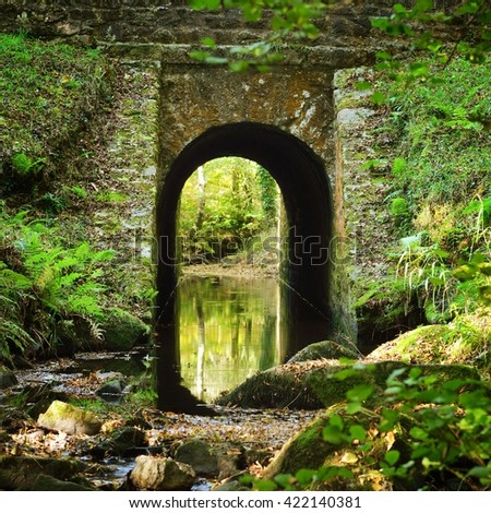 Old stone bridge in a green deciduous forest - stock photo