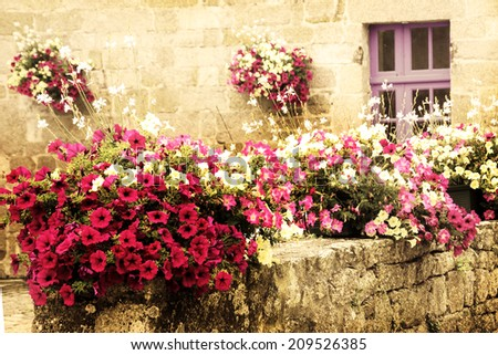 Old stone house decorated with colorful petunia flowers in medieval town Moncontour. Brittany, France. Aged photo. - stock photo