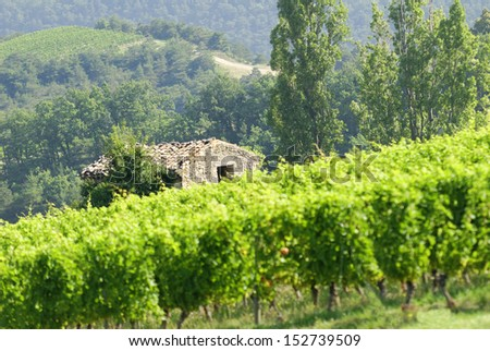 old stone house surrounded by vineyards