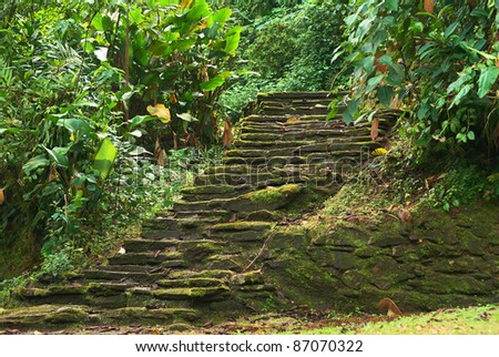 Old stone stairs in Ciudad Perdida (Lost City), built by the people of Tayrona. This archeological site is close to Santa Marta in the Sierra Nevada, Northern Colombia. - stock photo