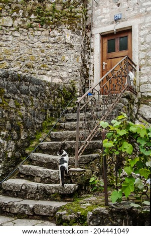 Old stone stairs with cat leading to house in Kotor,  Montenegro - stock photo