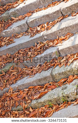 Old Stone Stairway in the Fall with fallen leaves at Belgrade fortress, Belgrade Serbia - stock photo
