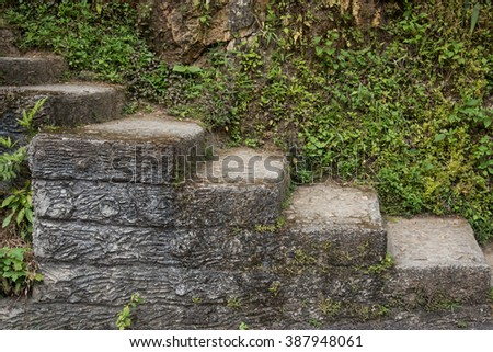 Old stone stairway with plants - stock photo